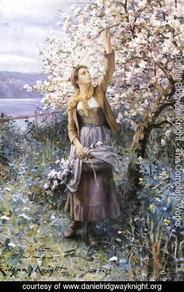 Daniel Ridgway Knight - Gathering Apple Blossoms